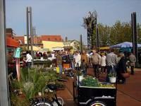 Pflanzenmarkt2010